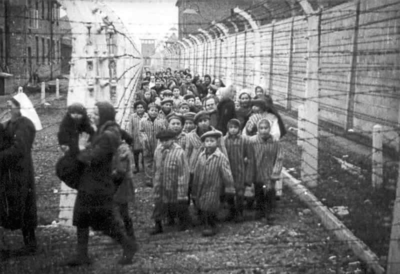 aushwitz essay This subject, concentration camps, was very effective to increasing my knowledge on the holocaust during my research i discovered many events that took place in concentration camps and specifically auschwitz.
