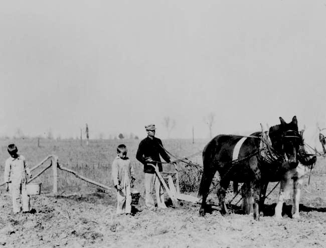 essays about the dust bowl