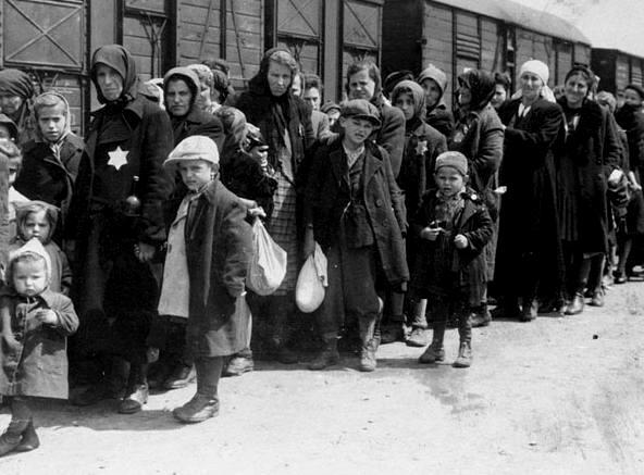 holocasut essay