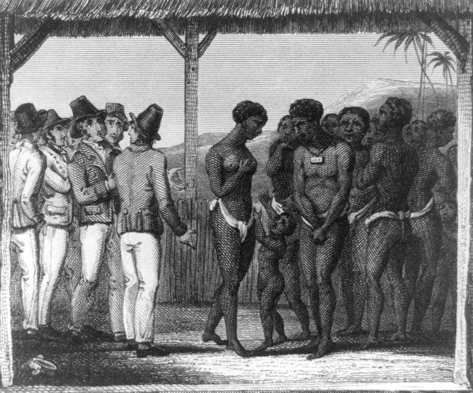 what did the africans brought to caribbean development The growth of the slave trade was directly tied to the cultivation of sugarcane,   that it was more profitable to use slaves, forcibly brought from africa, rather than   both the eastern caribbean dollar and the us dollar are used as currency.