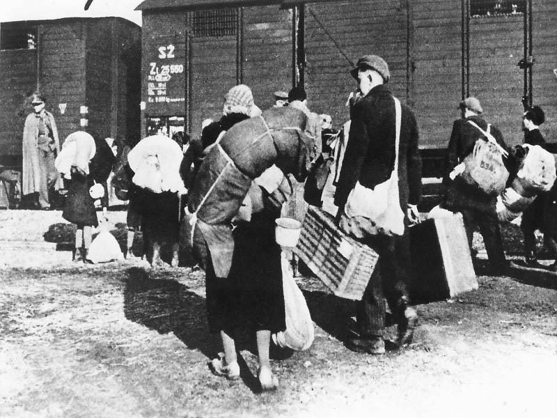 Sample Essay on the Impact of Holocaust on Jewish Community